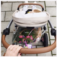 De kinderwagen met handsfree inklapsysteem